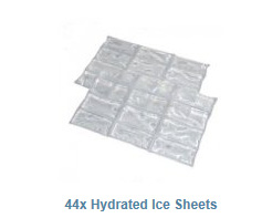 Ice Sheets with water