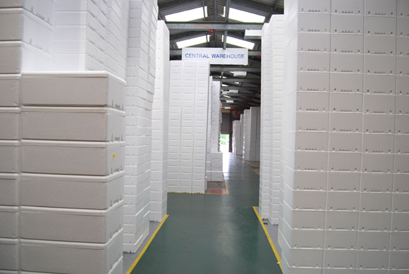 Polystyrene Boxes Warehouse